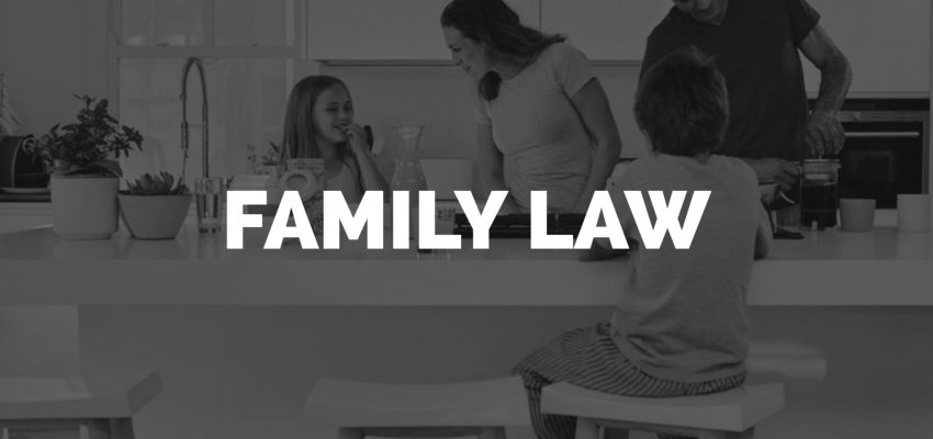 Reasons To Hire A Family Lawyer: